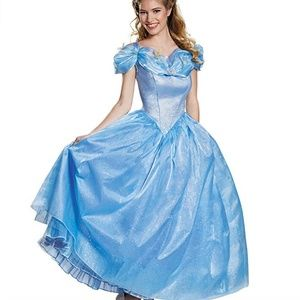 Cinderella Prestige Costume Gown